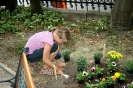 2009. 09. 04. Virágültetés a kertben