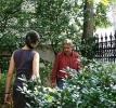 2009. 09. 18. Virágültetés