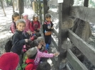 2012. 09. 23. Budakeszi Vadasparkban az 1.c osztály