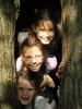 2014. 10. 16. Az Alcsúti Arborétumban járt a 3.c osztály