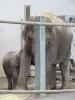 2013. 09. 24. Állatkertben a 4. évfolyam