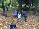 2017. 10. 10. Környezetismeret-óra 1.b osztály