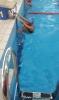 2017. 10. 14. XII. kerületi Diákolimpia úszóbajnokság