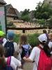 2018. 06. 13. Állatkerti látogatás 1.b osztály