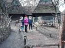 2019. 12. 10. Látogatás az Állatkertben az angol pályázatírókkal